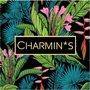 5535 Charmin's Bewaardozen Sieraaddoos