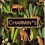 5534 Charmin's Bewaardozen Sieraaddoos