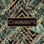 5527 Charmin's Bewaardozen Sieraaddoos